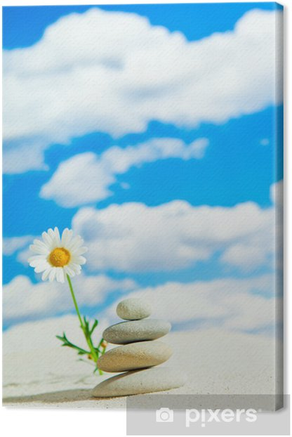 Natur Canvas Print - Nature and Wilderness