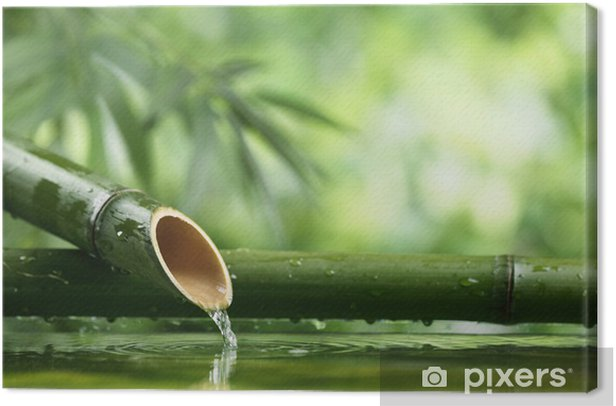 Natural bamboo fountain Canvas Print - Styles