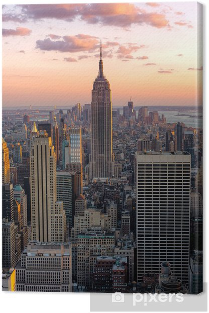 New York Empire state building Canvas Print -