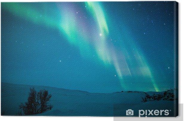 Northern lights (Aurora borealis) above snow Canvas Print - Themes
