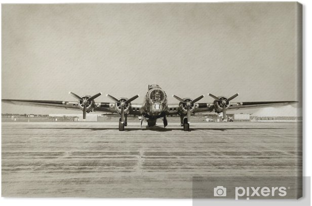 Old bomber front view Canvas Print - Styles