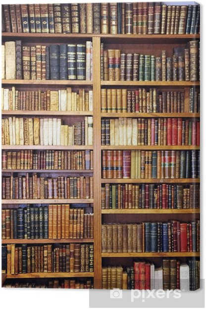 Old books, library Canvas Print - Library
