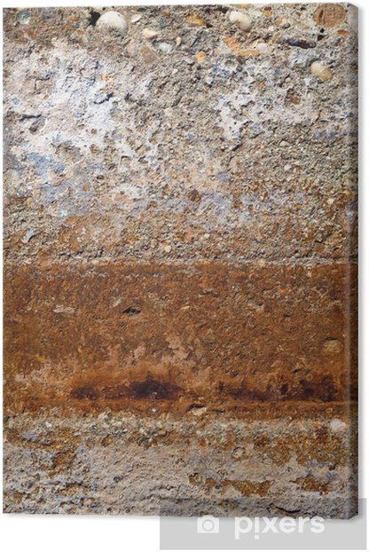 Old Multicolor Plaster Wall Canvas Print - Abstract