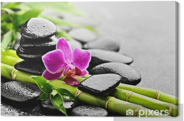 orchid Canvas Print - Styles