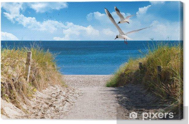 Ostseeküste Canvas Print - Sea and ocean