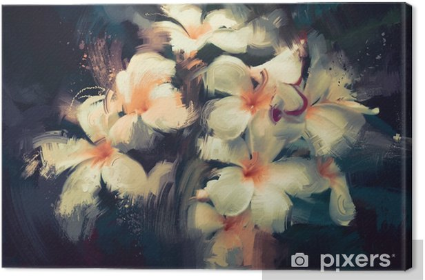 painting showing beautiful white flowers in dark background Canvas Print - Plants and Flowers