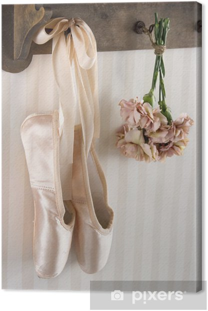Pair of ballet pointe shoes hanging from a rack Canvas Print -
