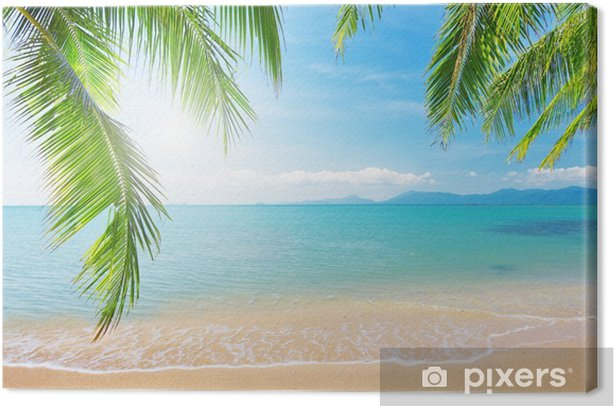 Palm and tropical beach Canvas Print - Styles