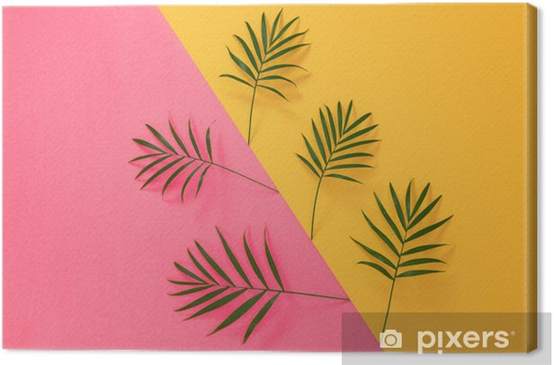Palm leaves on vibrant pink and yellow background Canvas Print - Plants and Flowers