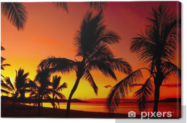 Palms silhouettes on a tropical beach at sunset Canvas Print - Palm trees