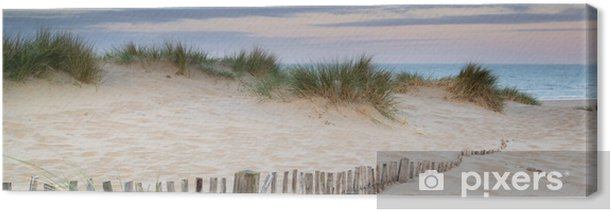 Panorama landscape of sand dunes system on beach at sunrise Canvas Print - Themes