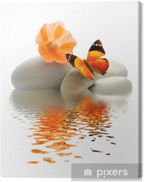 Papillon galet Canvas Print -