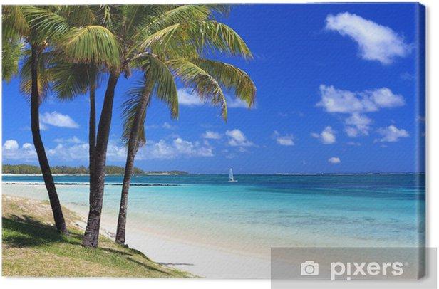 paradise beach in tropical island Canvas Print - Destinations