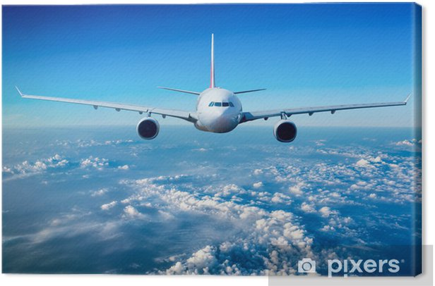 Passenger Airliner in the sky Canvas Print - Themes