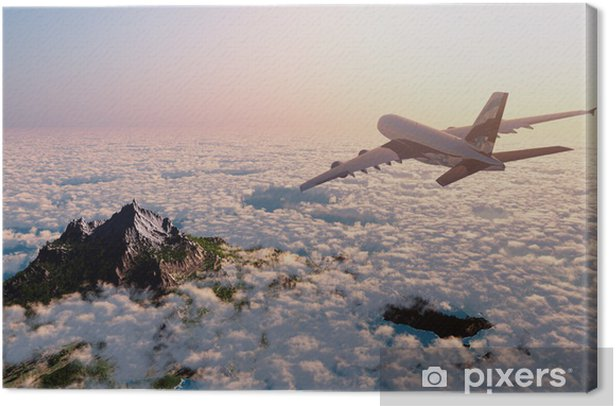 Passenger plane Canvas Print - Themes