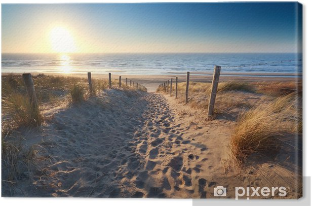 path to sand beach in North sea Canvas Print - Themes