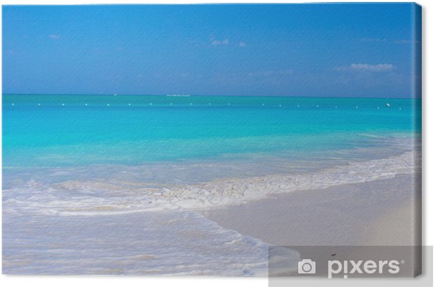Perfect white beach with turquoise water at ideal island Canvas Print - Water