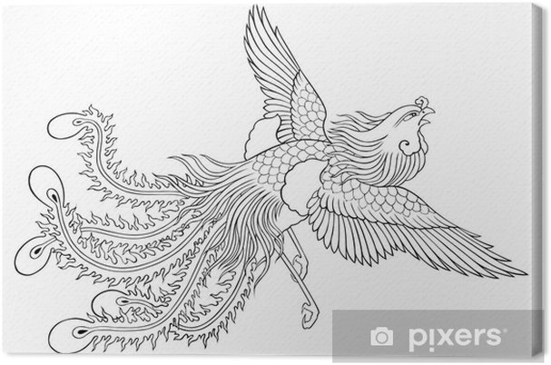 phoenix chinese style for coloring Canvas Print • Pixers® • We live ...
