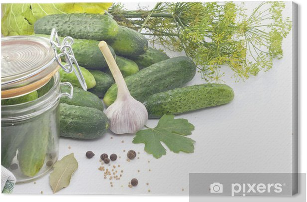 Pickled cucumbers with dill garlic and spices Canvas Print - Themes