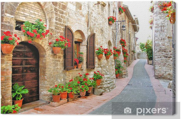 Picturesque lane with flowers in an Italian hill town Canvas Print - Themes