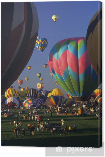 pink and blue Canvas Print - Air