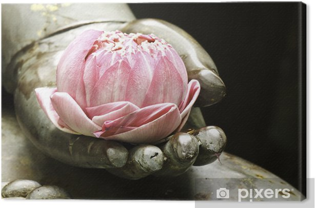pink lotus in hand of buddha Canvas Print - Religion and spirituality