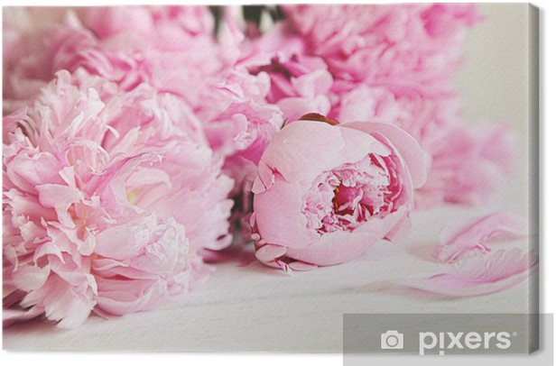 Pink peony flowers on wood surface Canvas Print - Styles