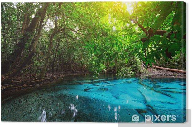 Pond Canvas Print - Themes