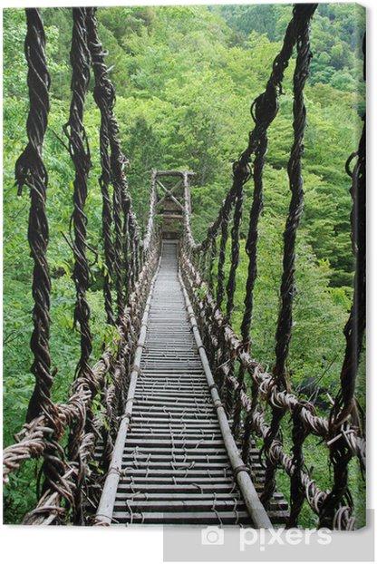 Pont de lianes Kazura-bashi à Oku Iya, Shikoku, Japon Canvas Print -