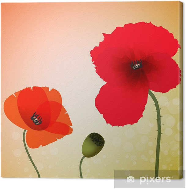Poppies Canvas Print - Themes