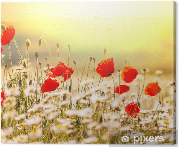 Poppy Canvas Print - Themes