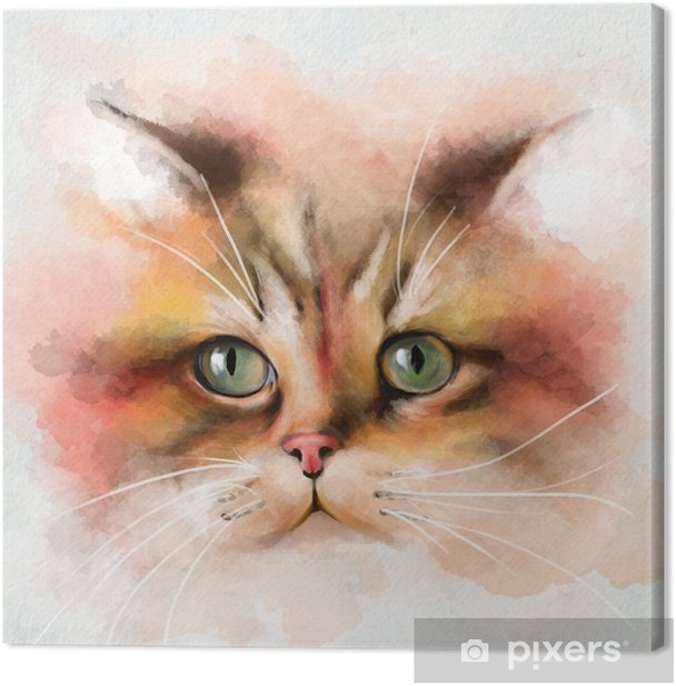 Portrait of cat with large multi-colored face and green eyes, closeup on white background Canvas Print - Animals