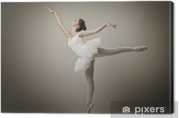 Portrait of the ballerina in ballet pose Canvas Print - Themes