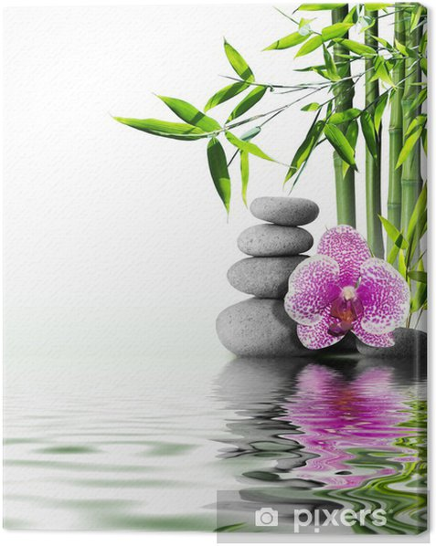 purple orchid flower end bamboo on water Canvas Print - Styles
