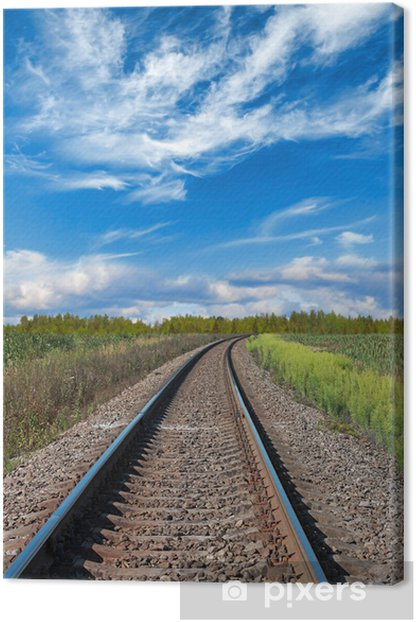 Railway perspective with green grass on sides Canvas Print - Railway
