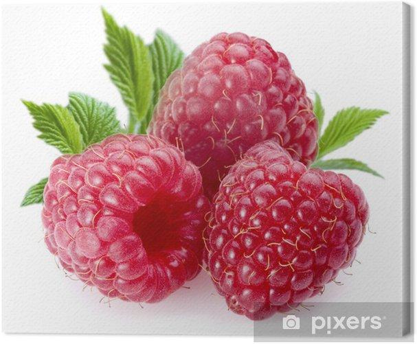 Raspberries Canvas Print - Raspberries