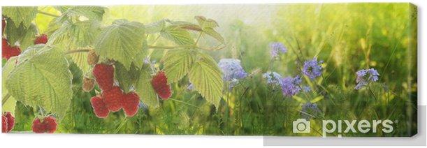 Raspberry.Garden raspberries at Sunset.Soft Focus Canvas Print - Raspberries