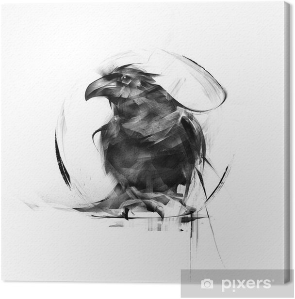 realistic black raven on a white background Canvas Print - Animals
