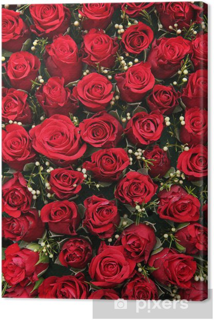 Red roses and small white berries Canvas Print - Celebrations