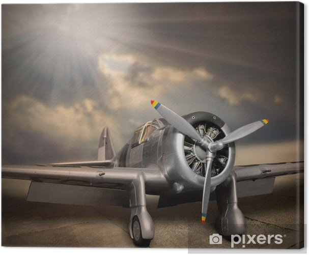 Retro style picture of the aircraft. Canvas Print - Themes