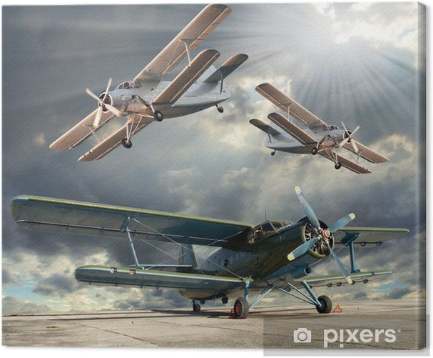Retro style picture of the biplanes. Transportation theme. Canvas Print - Themes