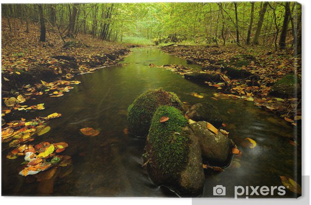 river Canvas Print - Themes