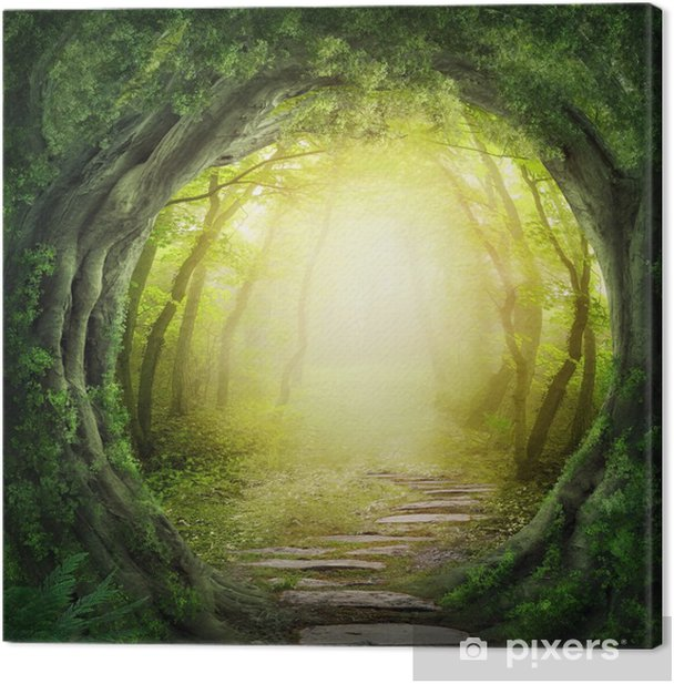 Road in dark forest Canvas Print - Themes