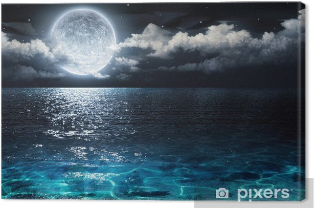 romantic and scenic panorama with full moon on sea to night Canvas Print - Water