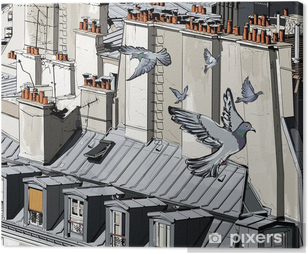 roofs in Paris Canvas Print - Themes