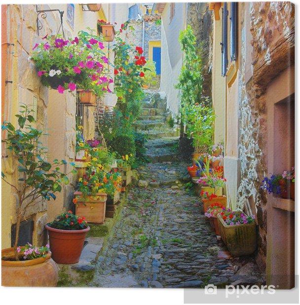 Ruelle étroite et colorée dans un village de Provence Canvas Print -
