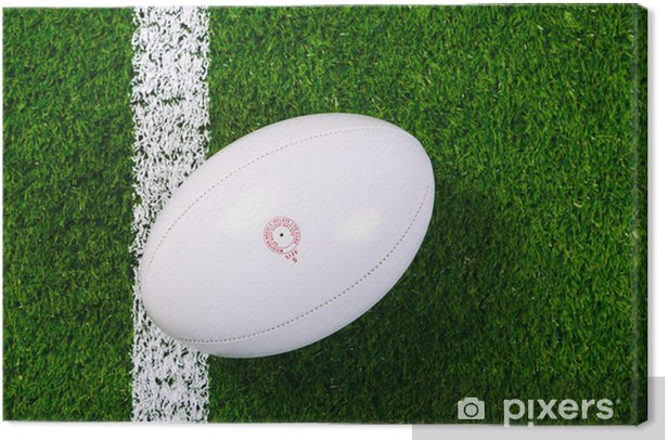 Rugby ball on grass from above. Canvas Print - Rugby
