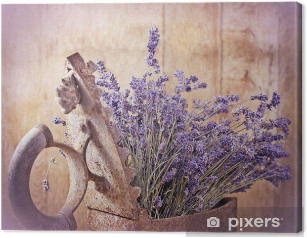 Rustic iron (old irin) and dry lavender Canvas Print - Themes
