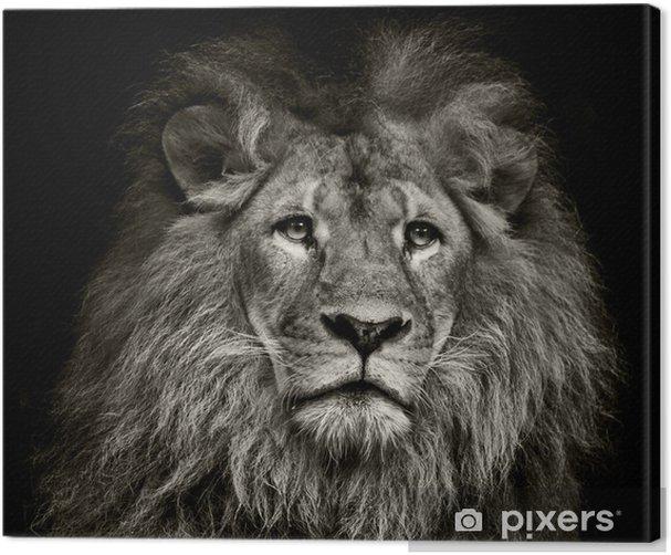 sad lion Canvas Print - Themes