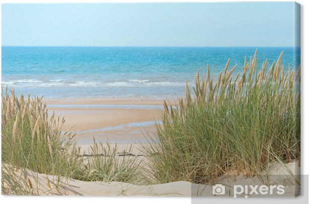 Sand beach in Formby, UK Canvas Print - Destinations